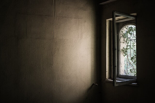 jak usunąć pleśń ze ściany